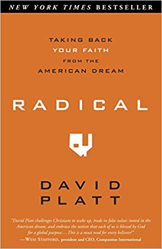 David Platt - Radical Audio Book Free